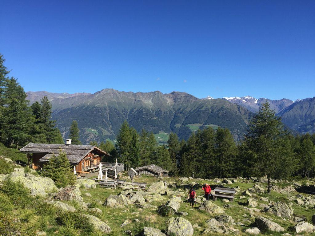 Almwanderung (Wanderhotel Vinschgerhof)