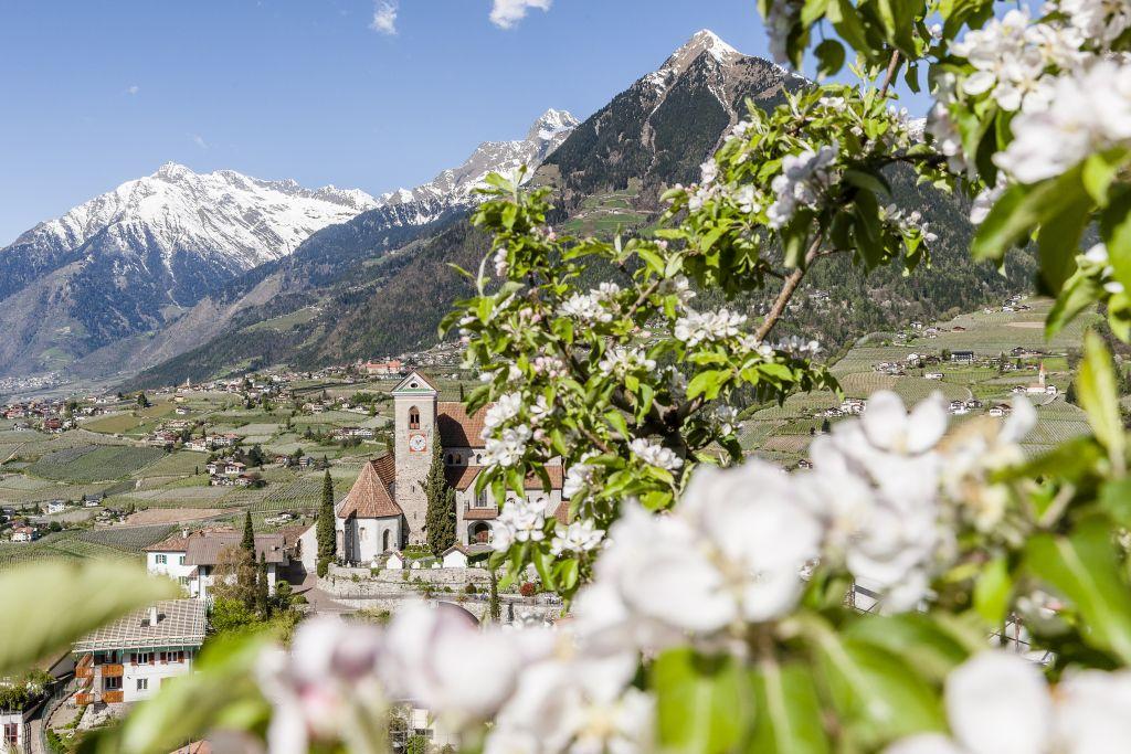 Schenna Dorf im Frühling (c) allesfoto.com (Der Weinmesser)