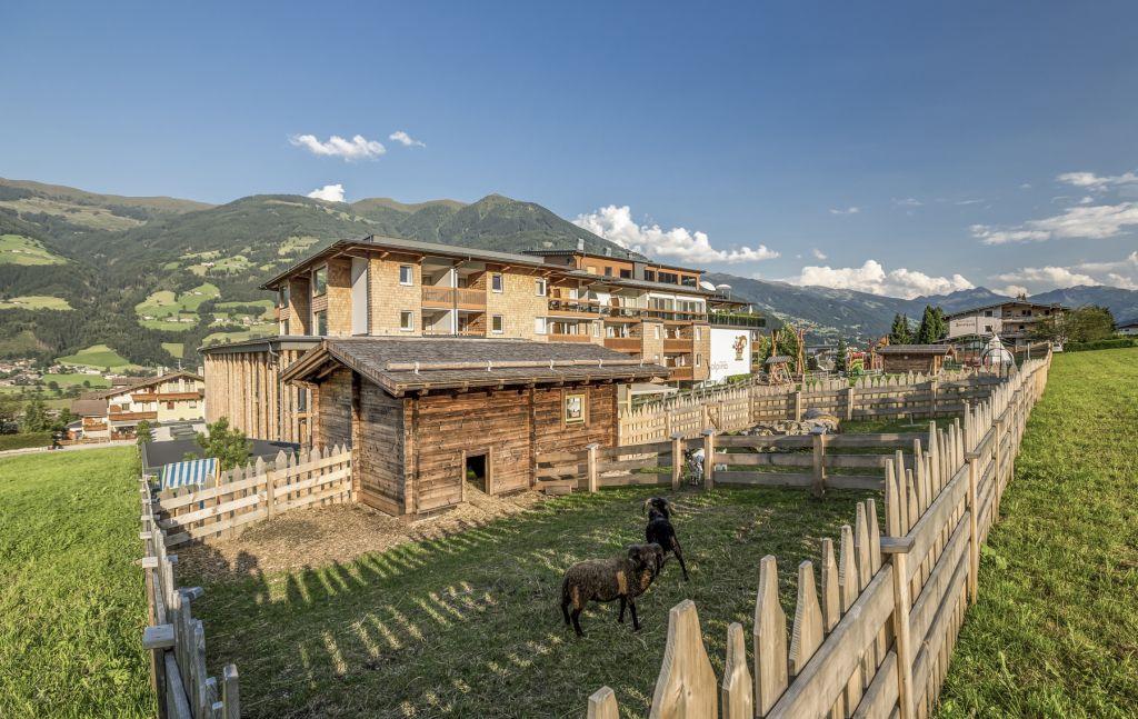 Streichelzoo im Sommer (alpina zillertal)