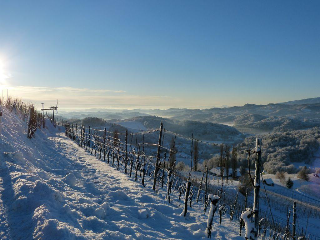 Verschneites Winterparadies (Ratscher Landhaus)