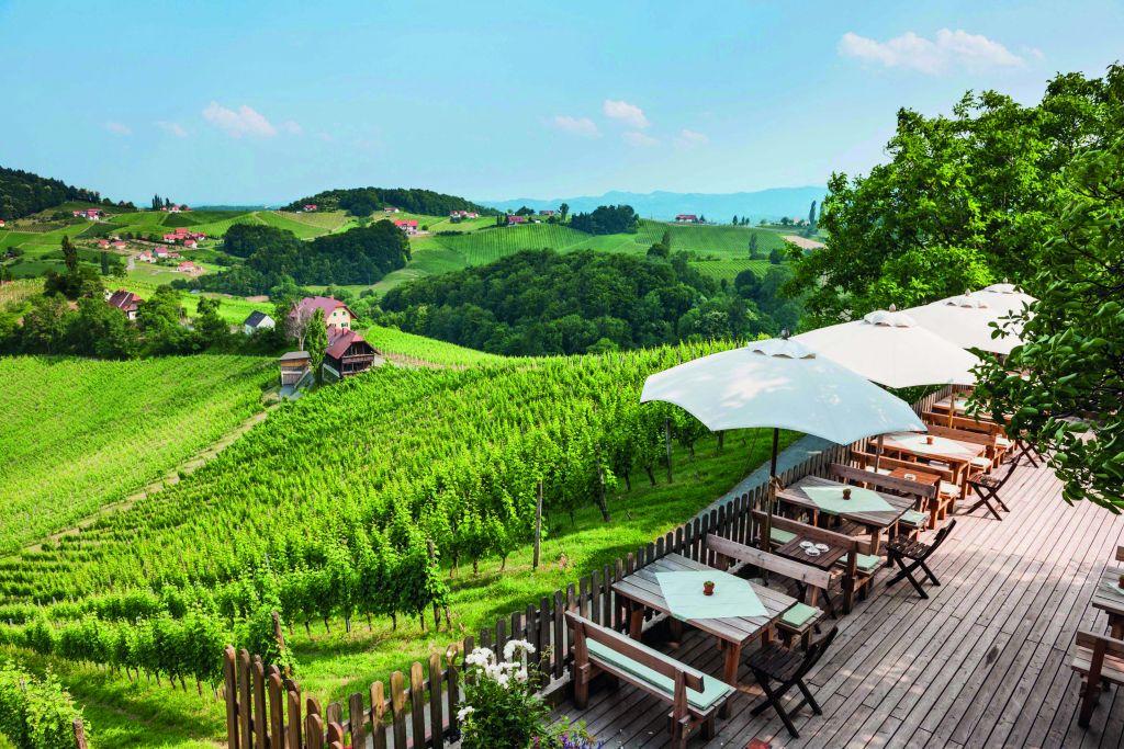 Weingut Maitz_Weinregion Südsteiermark (Schenkenfelder Kommunikation)
