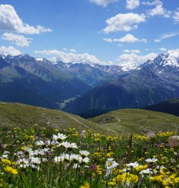Atemberaubende Aussicht beim Wandern (Wanderhotel Vinschgerhof)