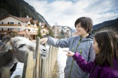 Alpizoo im Winter (c) Alex Filz (Alpthotel Tyrol)