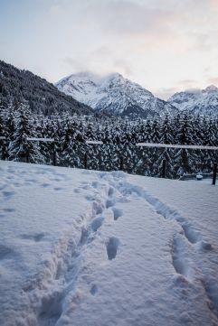 Ausblick auf die gezuckerten Berge (c)  Aileen Melucci (Wellnesshotel Walserhof - Kleinwalsertal Hotels)