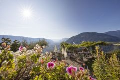Ausblick über Algund im Sommer (c) Frieder Blickle (Tourismusverein Algund)