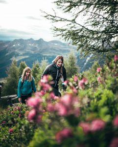 Ausgedehnte Wanderungen durch die hügeligen Almwiesen (c) Giggle Agentur (Fontis eco farm & suites)