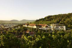 Aussenansicht Steigenberger Hotel (winzerhotels)