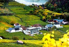 Aussenansicht und Weingarten vom Weinspitz (c) Pressefoto Lackinger (winzerhotels)