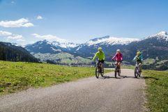 Biketour mit herrlicher Kulisse (c) Walserdruck (Genuss & Aktivhotel Sonnenburg - Kleinwalsertal Hotels)