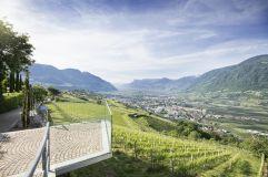 Blick auf die Weinberge von der Hotelterrasse (c) Tourismusverein Dorf Tirol (Hotel Golserhof)