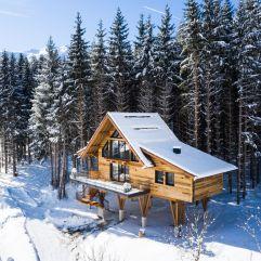 Das Baumhaus im Winter (Hotel Gassner)