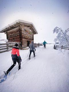 Die winterliche Bergwelt entdecken (Alpinhotel Berghaus)