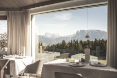 Direkter Blick auf die Natur vom Restaurant aus (c) Armin Huber (Hotel Tann)