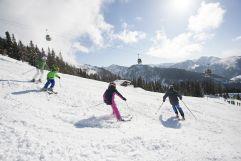 Familie beim Skifahren (c) TVB WagrainKleinarl (Chaletdorf Prechtlgut)