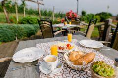 Frühstücken in den Weinbergen (c) Karin Bergmann (Ratscher Landhaus)