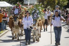 Großer Zuschauerandrang beim Krimmler Alamabtriebsfest (Tourismusverband Krimml)