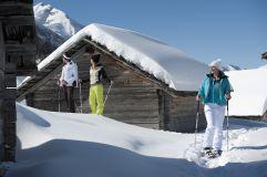 Gruppe beim Schneeschuhlaufen auf der Alm in Olang © TVB Kronplatz - Photo Helmuth Rier