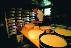 Hauseigene Käseherstellung (c) RB Dittrich (Castello Königsleiten)