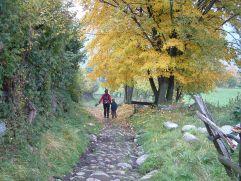 Herbst im Tourismusverein Klausen