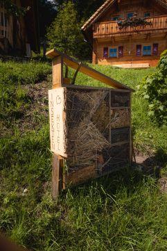 Im Naturdorf finden selbst Insekten ihren Platz (c) Daniel Kogler (Naturdorf Oberkühnreit)