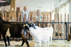 Kinder vorm Streichelzoo (c) Daniela Jakob (Dachsteinkönig - Familux Resort)