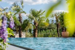 Oudoorpool umgeben von Palmen im Plantitscherhof (c) Günter Standl (winzerhotels)