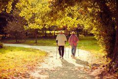 Paar mit Walkingstöcken spaziert durch herbstlichen Wald (c) www.tigerphoto.hu (Sárvár Tourist & TDM Nonprofit Kft.)