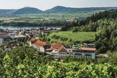 Panoramaansicht Steigenberger (winzerhotels)