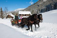 Pferdeschlittenfahrt in verschneiter Landschaft (c) TVB WagrainKleinarl (Chaletdorf Prechtlgut)