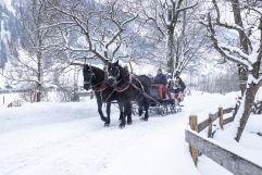 Romantische Pferdeschlittenfahrt in verträumter Winterlandschaft (c) Florian Bachmeier (Tourismusverband Rauris)