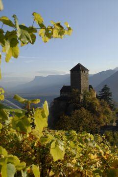 Schloss Tirol in Dorf Tirol bei Meran mit Bergpanorama (Hotel Ansitz Golserhof)