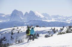 Schneeschuhwanderer vor Naturkulisse - Villanderer Alm im Tourismusverein Klausen