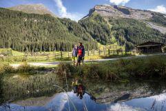 Sommer-Wanderurlaub im Naturparadies Tux (c) Tourismusverband Tux (Alpinhotel Berghaus)