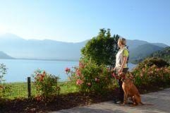 Spaziergang mit dem Hund am Lago di Caldonazzo (c) G. Libardi (TVB Valsugana Lagorai)