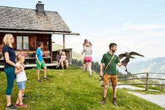 Staunende Kinderaugen bei der Greifvogelschau auf der Hochalm (c) MAYA Inspiranto (Tourismusverband Rauris)