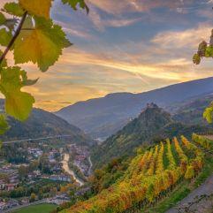 traumhafte Aussicht von den Weinbergen (c) Rene Gruber (Tourismusverein Klausen)