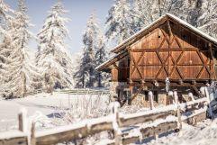 Verschneiter Außenbereich mit historischem Gebäude (Hotel Tann)
