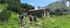 Vielfältiges Sport- und Wandergebiet im Zillertal (c) Tourismusverband Tux (Alpinhotel Berghaus)