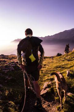 Wandern mit Hund bei Sonnenuntergang (Wanderhotel Vinschgerhof)
