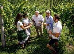 Weinverkostung im Weingarten im Ratscher Landhaus (c) Tom Lamm (winzerhotels)