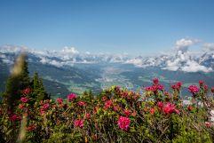 Wunderschöner Bergblick (c) Angélica Morales (Silberregion Karwendel)