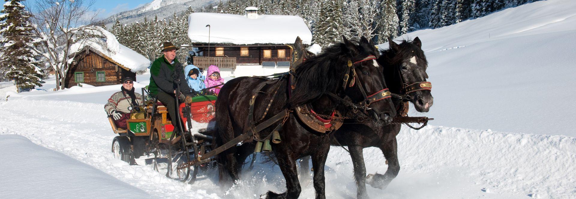Pferdeschlittenfahrt in verschneiter Landschaft (c) TVB WagrainKleinarl (Prechtlgut)
